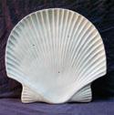 3192 Shell Platter